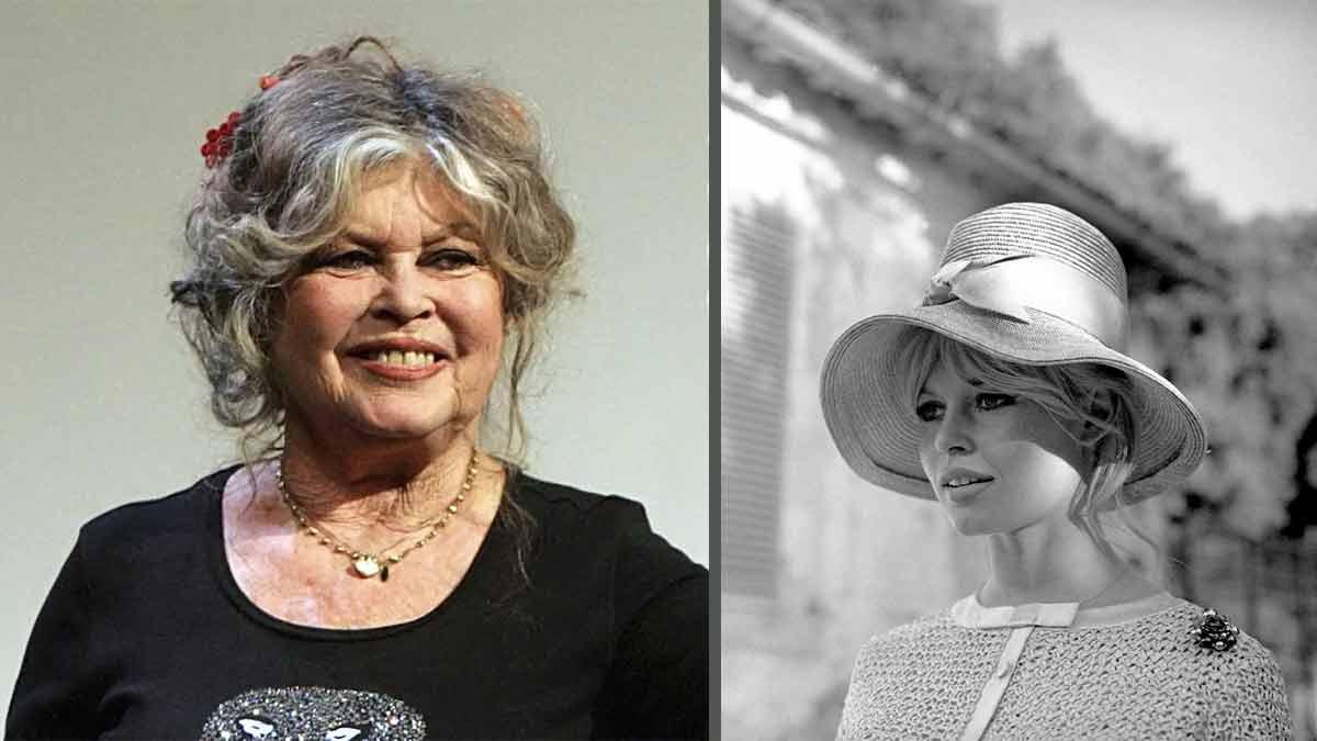 Brigitte Bardot fuit la France ? Révélation sur son scandale !