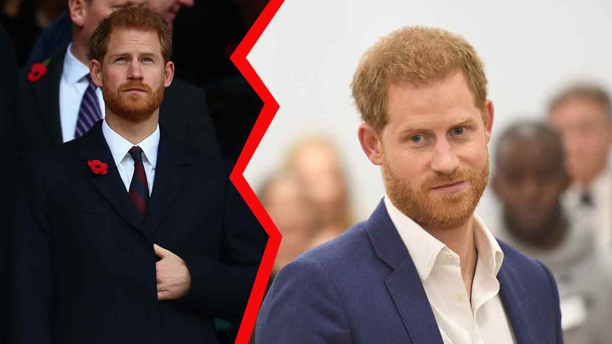 Le prince Harry, le résultat de son test ADN révèle une conclusion ahurissante!