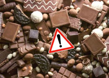 Alerte DANGER! Ces chocolats de Noël vendus partout ne doivent surtout pas être consommés!
